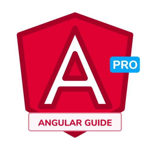 Development Guide for Angular