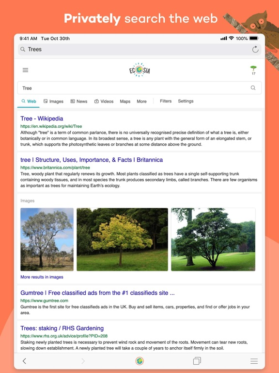 Ecosia screenshot