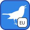 BirdingApps - BirdSounds Europe kunstwerk