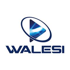 Walesi