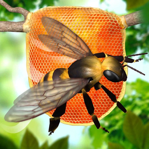 Bee Factory 3D