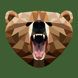 Grizzly VPN - Best Hotspot VPN