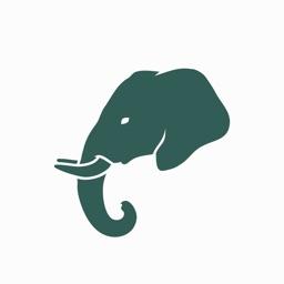 i of the Elephant