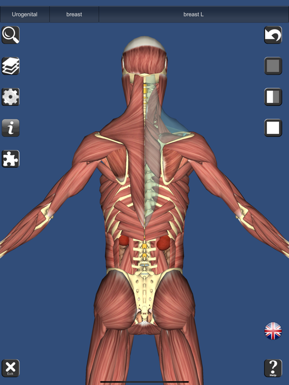 3D Anatomy Learning by Education Mobile (iOS, United States