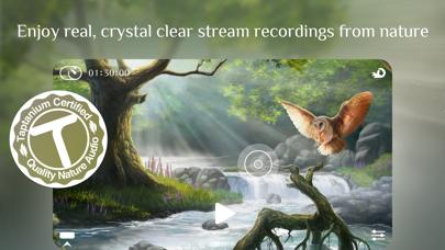 Flowing 2 ~ Sleep Sounds Relaxのおすすめ画像2