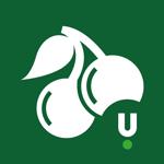 Unibet Casino на пк