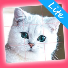 Activities of Kittens Lite - Easy Puzzle