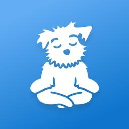 Meditation for Sleep and Calm