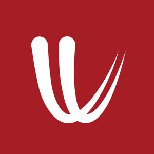 Windy.com Weather app