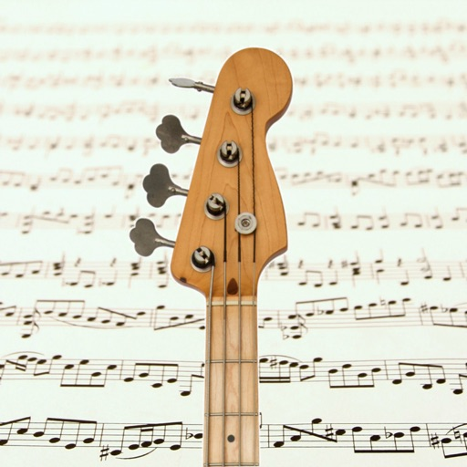 Bass guitar notes reading PRO