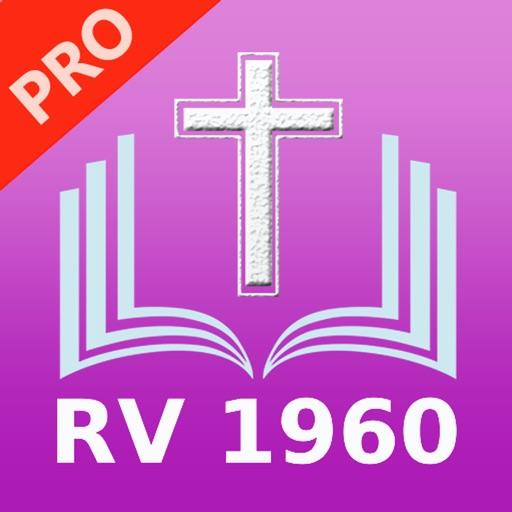 Santa biblia Reina Valera Pro