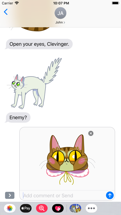 点击获取Ordinary Cats