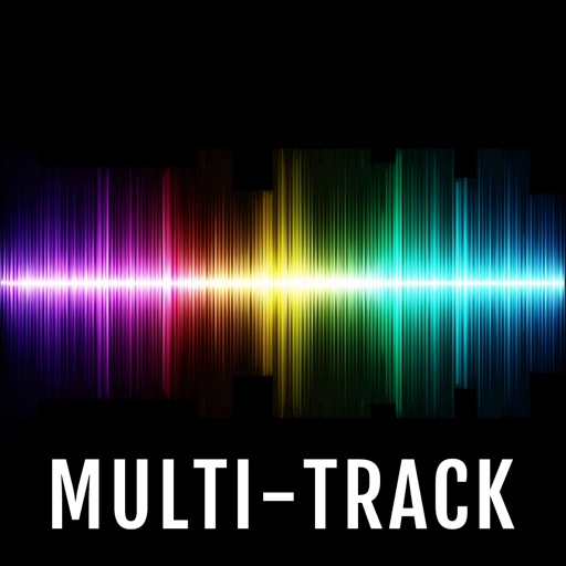 MultiTrack Recorder Plugin