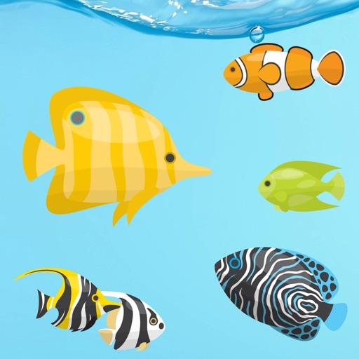 Magic Fish AR