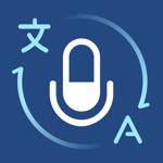 Голосовой переводчик: перевод на пк