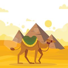 Desert Camel & Guess