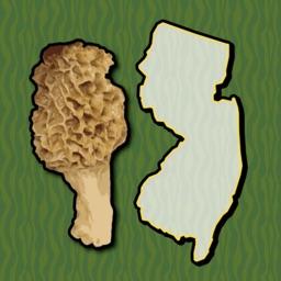 New Jersey Mushroom Forager