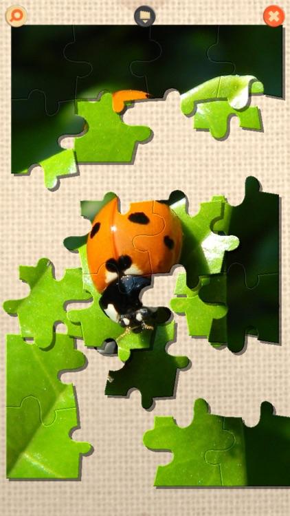 PuzzleX Phone