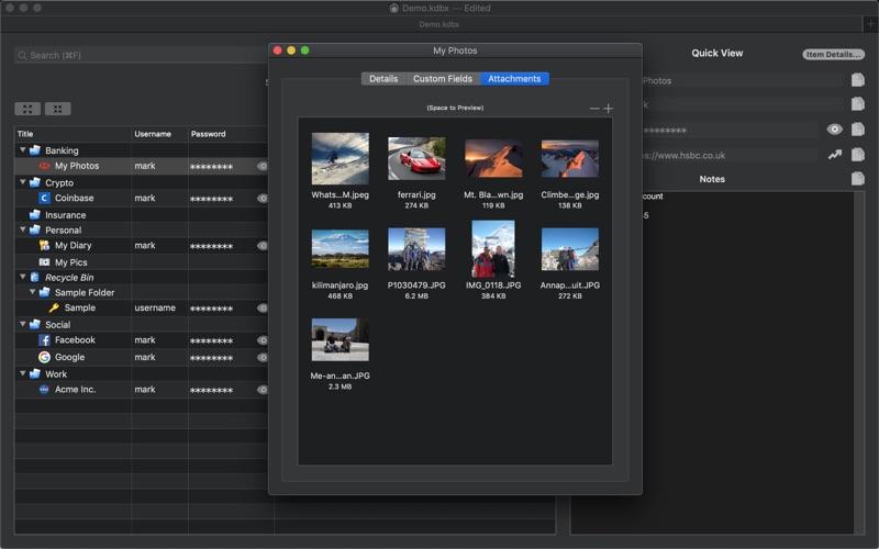Strongbox Pro (Outright) скриншот программы 1