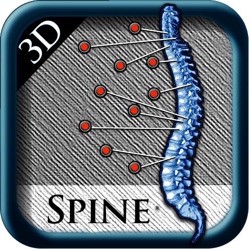 3D Spine St