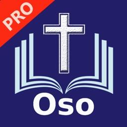 La Biblia del Oso 1569 Pro