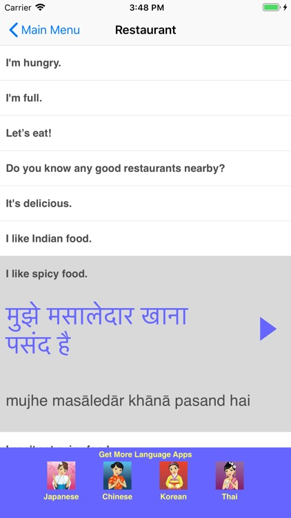 Speak Hindi Travel Phrasebook screenshot-3