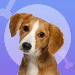 Dog translator-my dog whistle