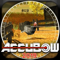 Codes for Accubow 2019 Hack