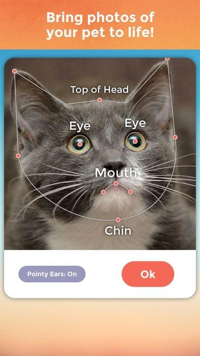 Download My Talking Pet for Pc