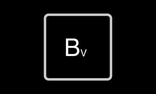B VERSION