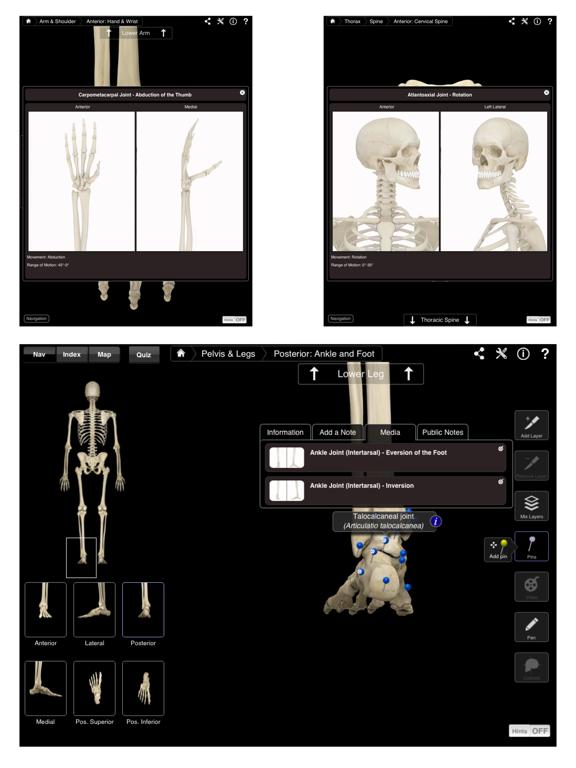 Skeleton System Pro III Screenshots