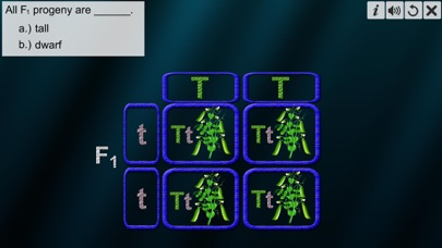 Monohybrid Cross screenshot 6