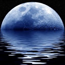 Lunar Watch moon calendar