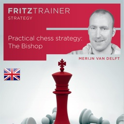 Chess Strategy: The Bishop