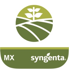 Syngenta MX