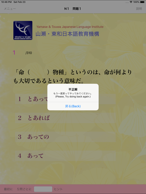 N1 文法問題集 screenshot 9