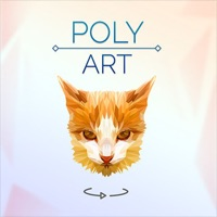 Imagination Poly Art