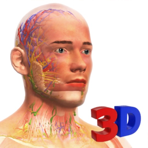 Idle Human 3D