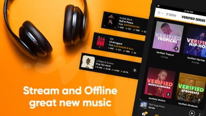 cancel Audiomack-New Music, Save Data app subscription image 1