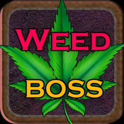 Weed Boss - Ganja Tycoon Idle