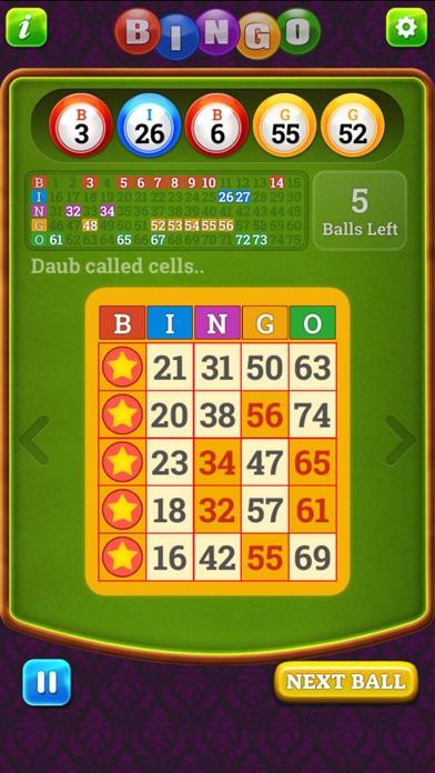 Bingo Classic Multi screenshot one