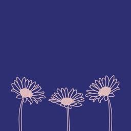 Sunflower: Skincare Reminder