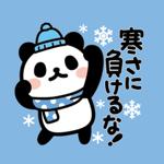 Bunanna PANDA8 /Winter