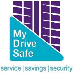MyDriveSafe.Expert