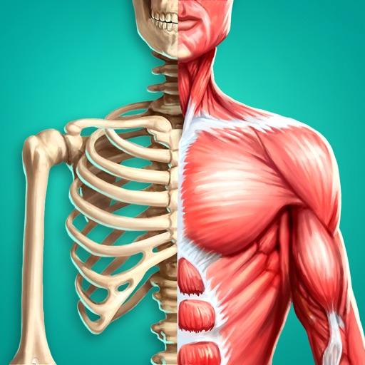 Baixar Anatomia Humana 3D AR para iOS
