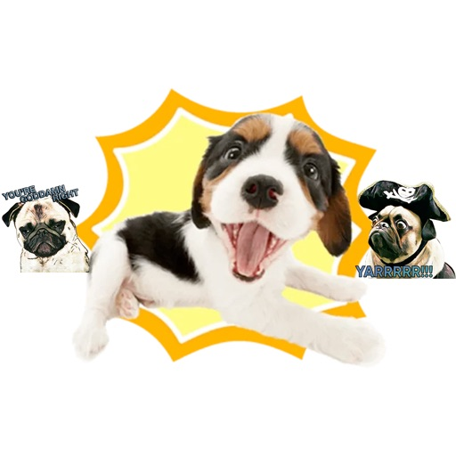 Stickers of crazy dogs