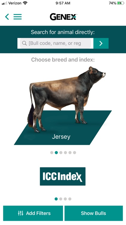 Bull Search