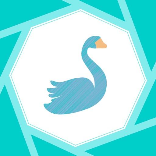 Birdify - Bird Identifier