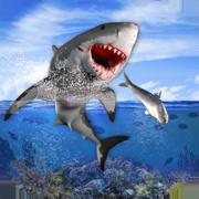 我饥饿的生存鲨鱼游戏