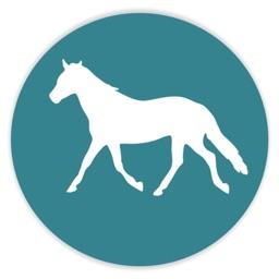 Pocket Pony Blanket Alerts